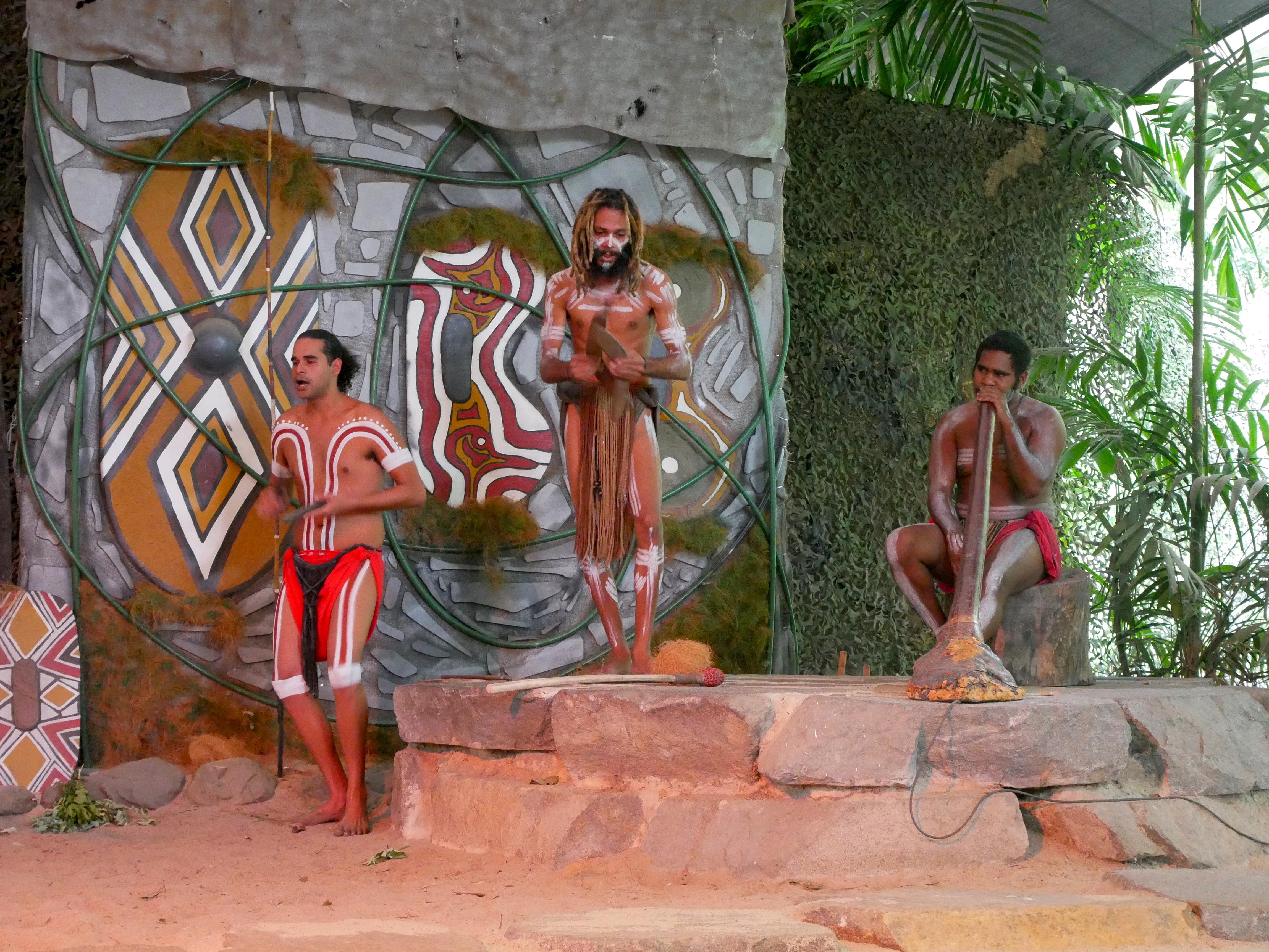 Visit Wet Tropical Forest of Queensland!